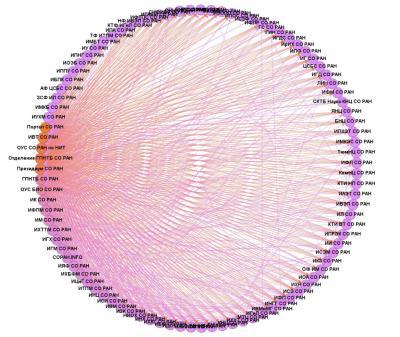 Рис. 5. СО РАН: граф типа «круг»